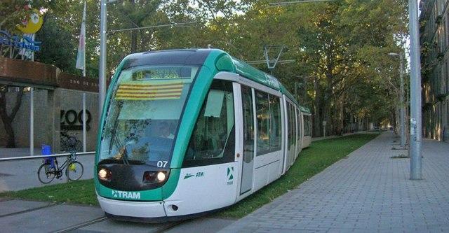 Tranvía pasando ante el Zoo