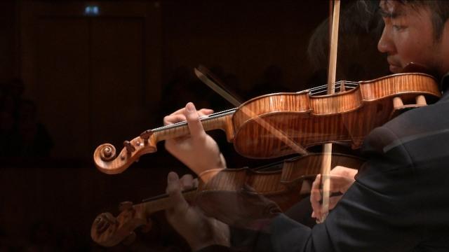 Sibelius Ray Chen